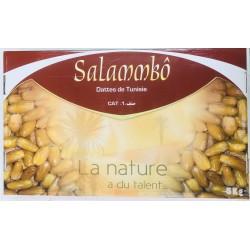 ФИНИК Тунис Salammbo